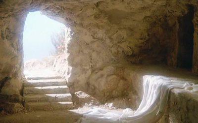 Áldott Húsvéti ünnepeket kívánunk!